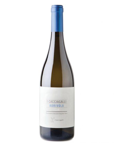 Aorivola Cacciagalli
